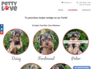 Alimentos mascotas en Santiago