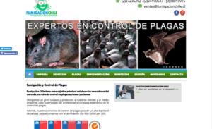 Control de plagas de ratones Chile